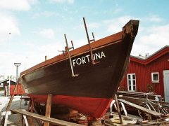 Fortuna_13.jpg