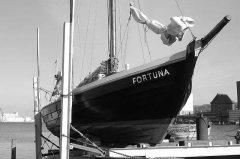 Fortuna_2008.jpg