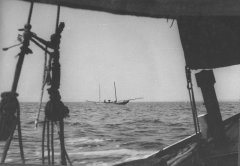 FZ25_Mastbruch_1.Regatta_Bod_1965_1.jpg