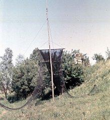 Das Zeesnetz hängt am Trockengestell (Foto: Prof. Dr. Hoffmann)